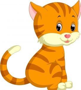 Saggrenda: Katten Gizmo er hjemme etter to år på vandring 1