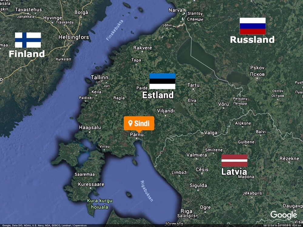 Estland: Trodde de reddet en hund fra drukning, men det var en ulv 5