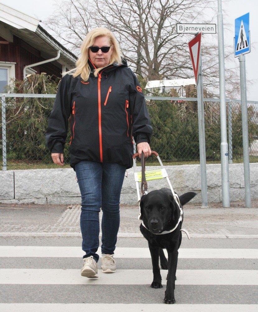 Blindeforbundet lanserer Førerhundvettreglene 1