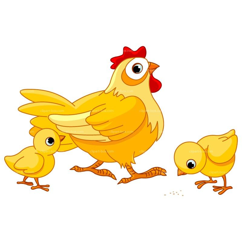 Fiskum: Løs hund drepte høner for fote 1
