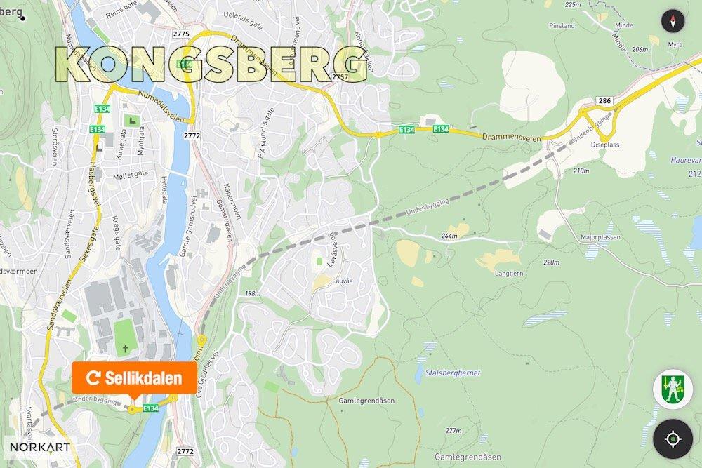 Åtte tonns kunstverk fra Hokksund til Kongsberg 6