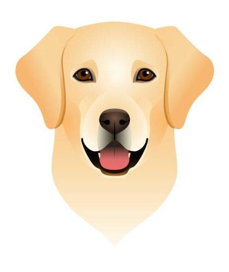 Flere tusen hundeeiere vil ha egen hund på frimerke 1